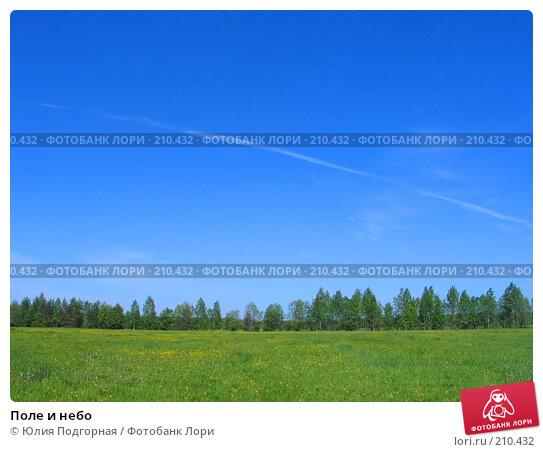 Поле и небо, фото № 210432, снято 12 июня 2006 г. (c) Юлия Селезнева / Фотобанк Лори