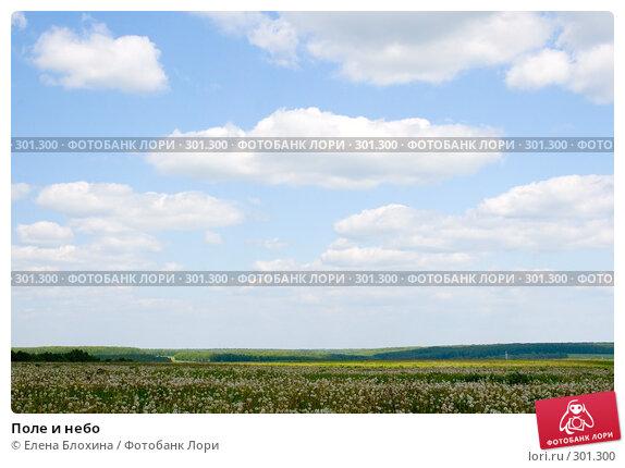 Поле и небо, фото № 301300, снято 27 мая 2008 г. (c) Елена Блохина / Фотобанк Лори