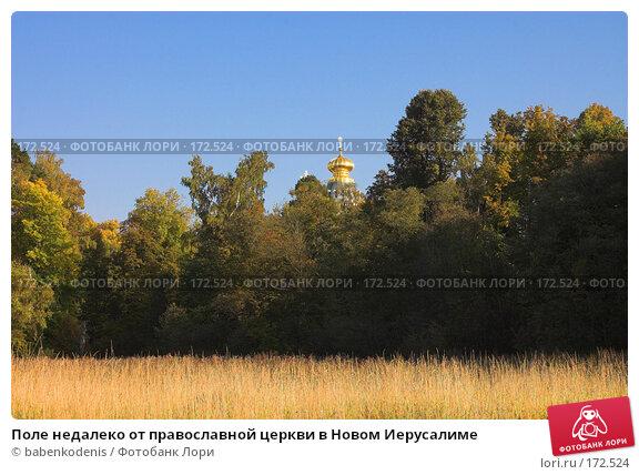 Поле недалеко от православной церкви в Новом Иерусалиме, фото № 172524, снято 24 сентября 2006 г. (c) Бабенко Денис Юрьевич / Фотобанк Лори