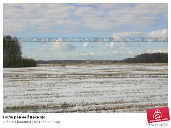 Купить «Поле ранней весной», фото № 149300, снято 16 марта 2007 г. (c) Елена Блохина / Фотобанк Лори