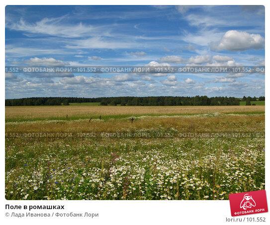 Купить «Поле в ромашках», фото № 101552, снято 22 июля 2007 г. (c) Лада Иванова / Фотобанк Лори