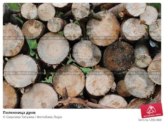 Поленница дров, фото № 292060, снято 16 мая 2008 г. (c) Смыгина Татьяна / Фотобанк Лори