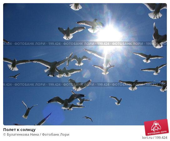 Полет к солнцу, фото № 199424, снято 9 июля 2005 г. (c) Булатенкова Нина / Фотобанк Лори
