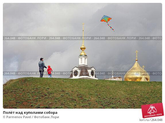 Полёт над куполами собора, фото № 264048, снято 19 апреля 2008 г. (c) Parmenov Pavel / Фотобанк Лори