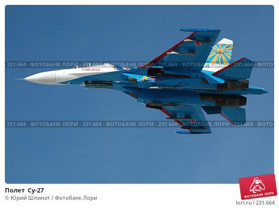 Полет  Су-27, фото № 231664, снято 22 марта 2008 г. (c) Юрий Шпинат / Фотобанк Лори