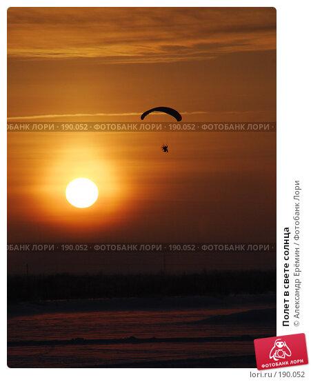 Полет в свете солнца, фото № 190052, снято 19 января 2008 г. (c) Александр Ерёмин / Фотобанк Лори