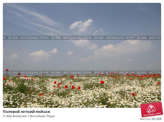 Полевой летний пейзаж, фото № 85068, снято 19 мая 2007 г. (c) Alla Andersen / Фотобанк Лори