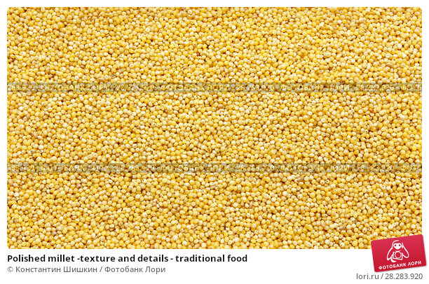 Купить «Polished millet -texture and details - traditional food», фото № 28283920, снято 9 апреля 2018 г. (c) Константин Шишкин / Фотобанк Лори