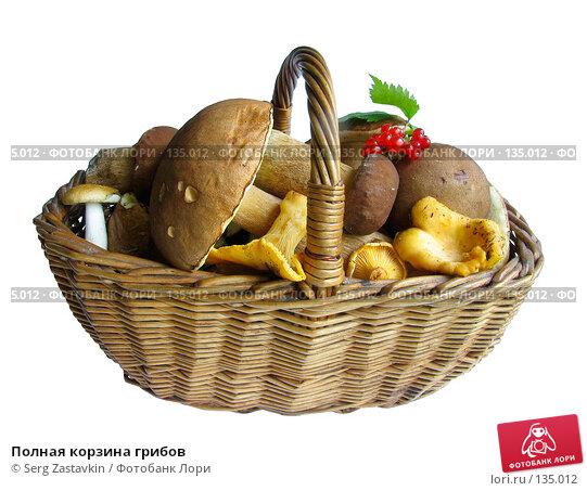 Полная корзина грибов, фото № 135012, снято 30 июля 2005 г. (c) Serg Zastavkin / Фотобанк Лори