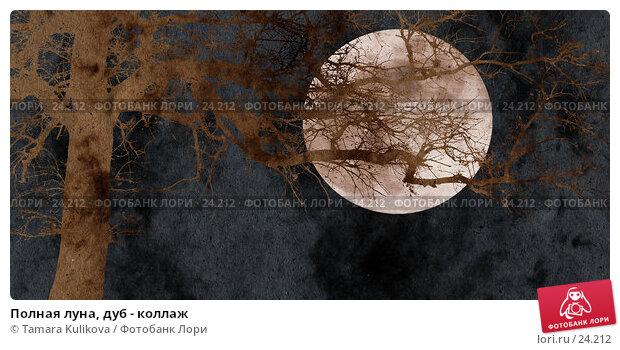 Полная луна, дуб - коллаж, иллюстрация № 24212 (c) Tamara Kulikova / Фотобанк Лори