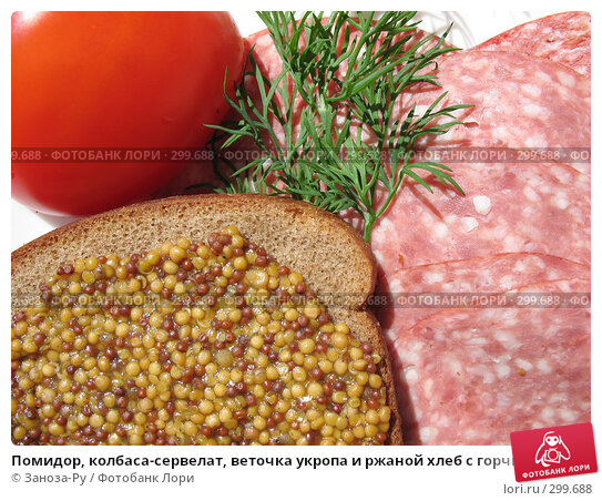 Помидор, колбаса-сервелат, веточка укропа и ржаной хлеб с горчицей, фото № 299688, снято 24 мая 2008 г. (c) Заноза-Ру / Фотобанк Лори