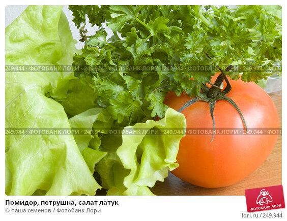Помидор, петрушка, салат латук, фото № 249944, снято 30 ноября 2007 г. (c) паша семенов / Фотобанк Лори