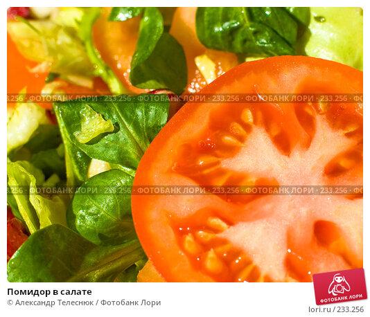 Купить «Помидор в салате», фото № 233256, снято 28 января 2008 г. (c) Александр Телеснюк / Фотобанк Лори