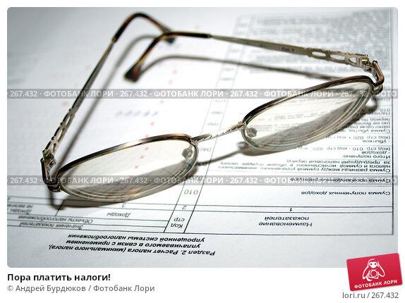 Пора платить налоги!, фото № 267432, снято 16 апреля 2008 г. (c) Андрей Бурдюков / Фотобанк Лори