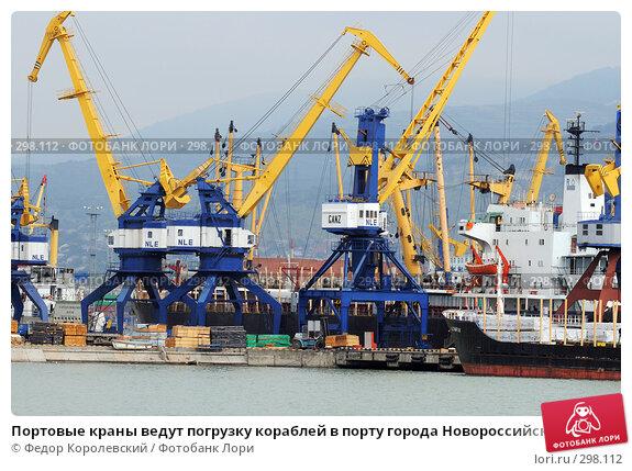 Портовые краны ведут погрузку кораблей в порту города Новороссийска, фото № 298112, снято 24 мая 2008 г. (c) Федор Королевский / Фотобанк Лори