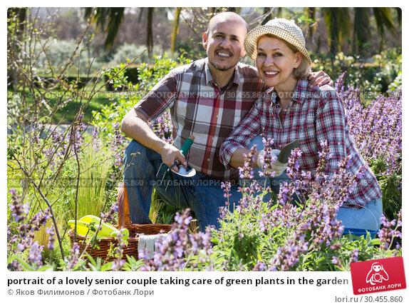 portrait of a lovely senior couple taking care of green plants in the garden. Стоковое фото, фотограф Яков Филимонов / Фотобанк Лори
