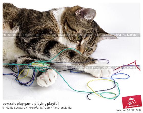 portrait play game playing playful. Стоковое фото, фотограф Nailia Schwarz / PantherMedia / Фотобанк Лори