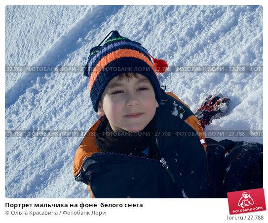 Купить «Портрет мальчика на фоне  белого снега», фото № 27788, снято 21 марта 2007 г. (c) Ольга Красавина / Фотобанк Лори