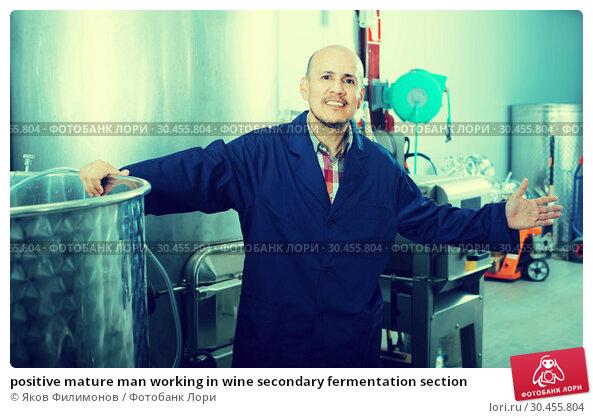 positive mature man working in wine secondary fermentation section. Стоковое фото, фотограф Яков Филимонов / Фотобанк Лори