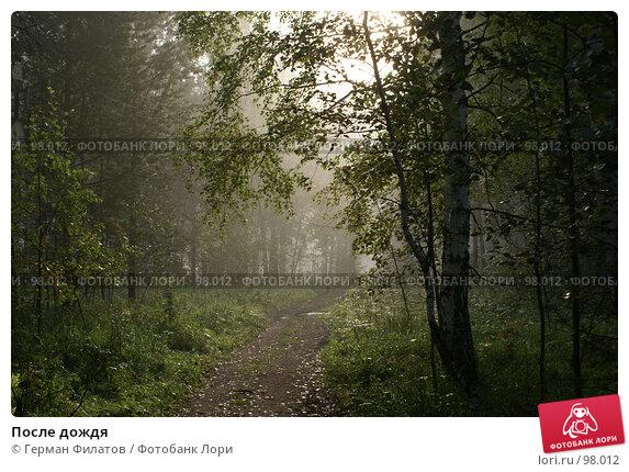 После дождя, фото № 98012, снято 19 июля 2007 г. (c) Герман Филатов / Фотобанк Лори