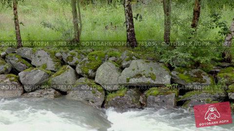 Купить «Поток реки по камням на берегу под березами, в летний день», видеоролик № 3783036, снято 15 мая 2012 г. (c) Losevsky Pavel / Фотобанк Лори