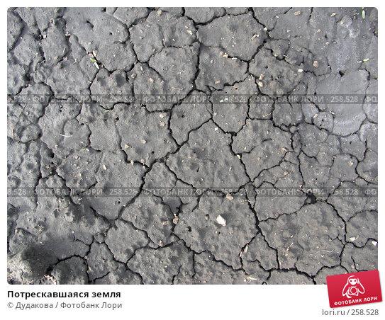 Купить «Потрескавшаяся земля», фото № 258528, снято 19 мая 2007 г. (c) Дудакова / Фотобанк Лори