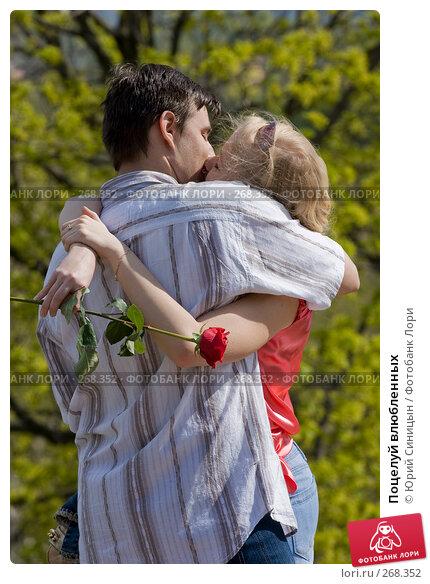 Поцелуй влюбленных, фото № 268352, снято 27 апреля 2008 г. (c) Юрий Синицын / Фотобанк Лори