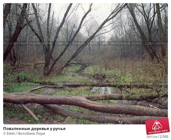 Купить «Поваленные деревья у ручья», фото № 2500, снято 25 апреля 2018 г. (c) Estet / Фотобанк Лори