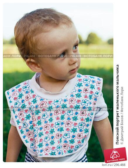 Поясной портрет маленького мальчика, фото № 296488, снято 16 июля 2006 г. (c) Дмитрий Боков / Фотобанк Лори