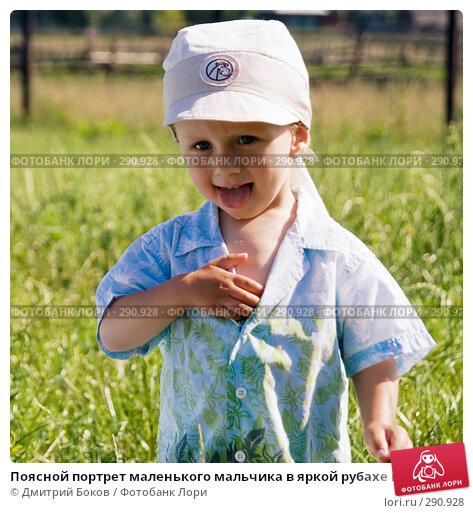 Поясной портрет маленького мальчика в яркой рубахе и кепке с высунутым языком на фоне деревенского пейзажа, фото № 290928, снято 15 июля 2006 г. (c) Дмитрий Боков / Фотобанк Лори