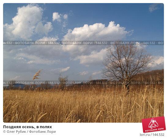Поздняя осень, в полях, фото № 144532, снято 25 октября 2007 г. (c) Олег Рубик / Фотобанк Лори