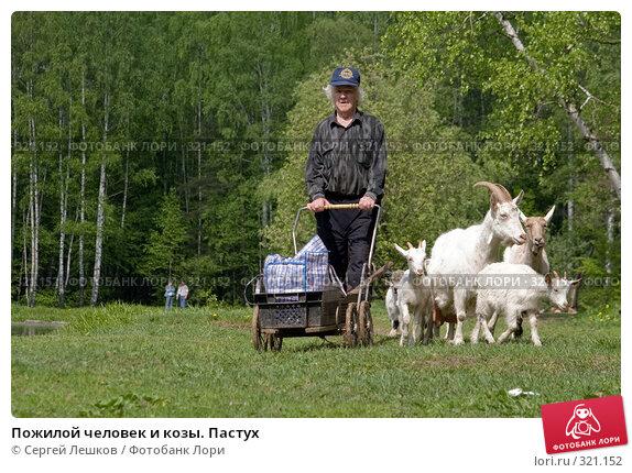 Пожилой человек и козы. Пастух, фото № 321152, снято 18 мая 2008 г. (c) Сергей Лешков / Фотобанк Лори