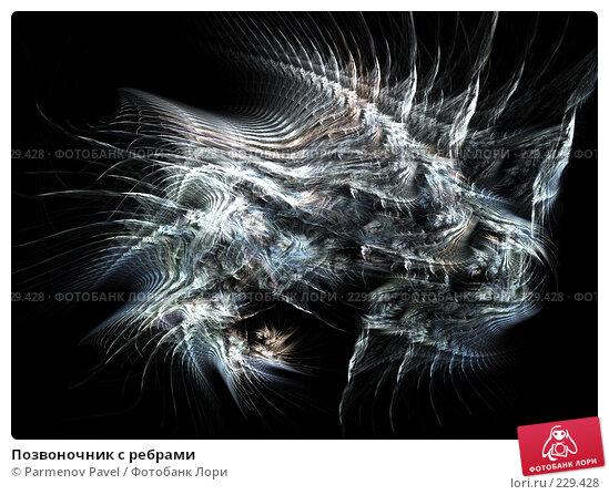 Позвоночник с ребрами, иллюстрация № 229428 (c) Parmenov Pavel / Фотобанк Лори