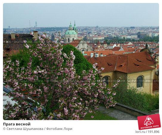 Купить «Прага весной», фото № 191896, снято 7 мая 2006 г. (c) Светлана Шушпанова / Фотобанк Лори