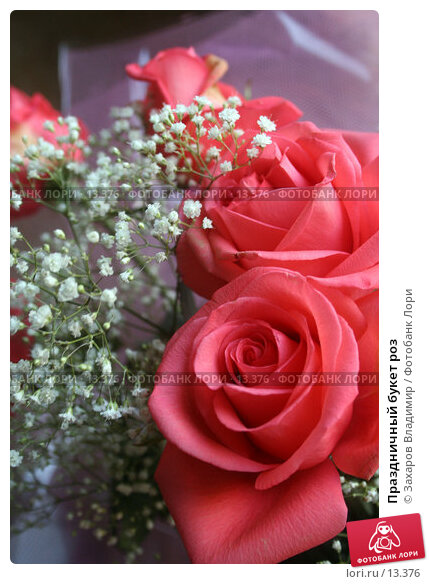 Праздничный букет роз, фото № 13376, снято 29 октября 2005 г. (c) Захаров Владимир / Фотобанк Лори