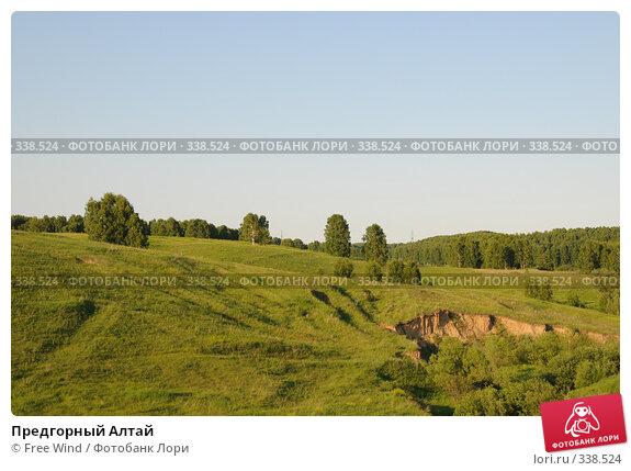 Купить «Предгорный Алтай», эксклюзивное фото № 338524, снято 27 июня 2008 г. (c) Free Wind / Фотобанк Лори