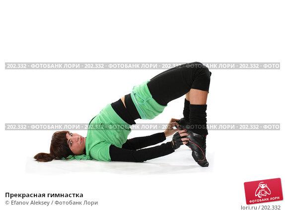 Прекрасная гимнастка, фото № 202332, снято 9 февраля 2008 г. (c) Efanov Aleksey / Фотобанк Лори