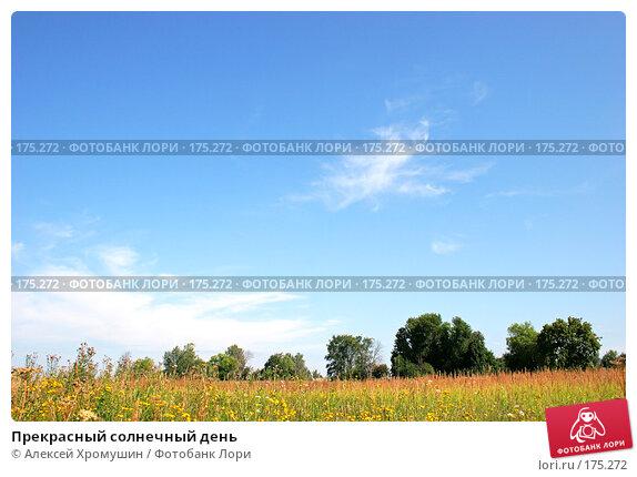 Прекрасный солнечный день, фото № 175272, снято 29 июля 2007 г. (c) Алексей Хромушин / Фотобанк Лори