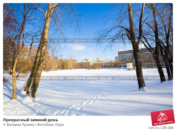 Прекрасный зимний день, фото № 236268, снято 22 февраля 2008 г. (c) Валерия Потапова / Фотобанк Лори