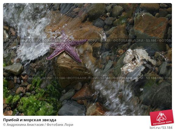 Прибой и морская звезда, фото № 53184, снято 16 сентября 2005 г. (c) Андрюхина Анастасия / Фотобанк Лори