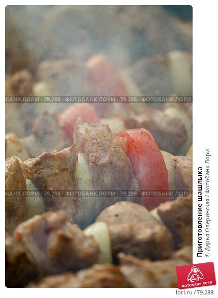 Купить «Приготовление шашлыка», фото № 79288, снято 30 апреля 2007 г. (c) Дарья Олеринская / Фотобанк Лори