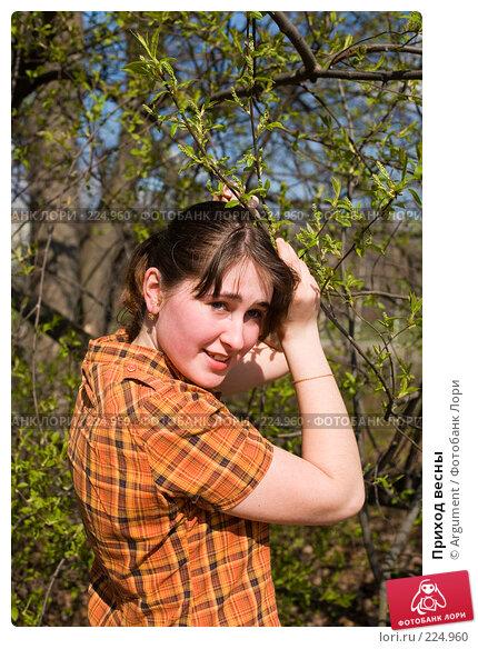 Приход весны, фото № 224960, снято 23 апреля 2007 г. (c) Argument / Фотобанк Лори
