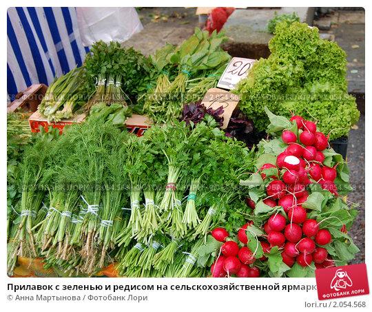 Купить «Прилавок с зеленью и редисом на сельскохозяйственной ярмарке», фото № 2054568, снято 16 октября 2010 г. (c) Анна Мартынова / Фотобанк Лори