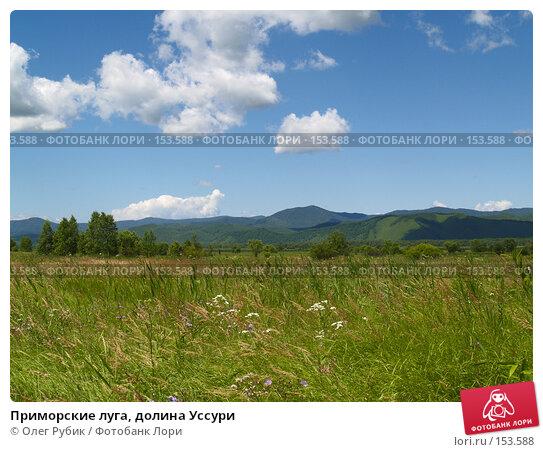 Приморские луга, долина Уссури, фото № 153588, снято 22 июля 2007 г. (c) Олег Рубик / Фотобанк Лори
