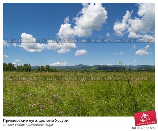 Приморские луга, долина Уссури, фото № 153592, снято 22 июля 2007 г. (c) Олег Рубик / Фотобанк Лори