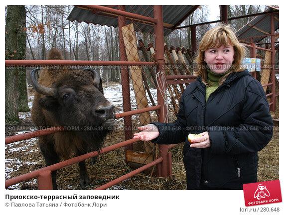 Приокско-террасный заповедник, фото № 280648, снято 4 марта 2008 г. (c) Павлова Татьяна / Фотобанк Лори