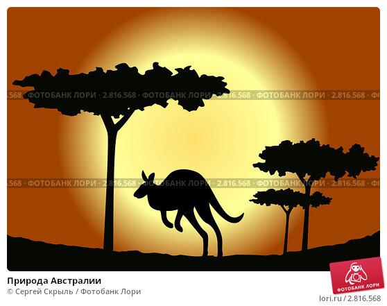 Купить «Природа Австралии», иллюстрация № 2816568 (c) Сергей Скрыль / Фотобанк Лори