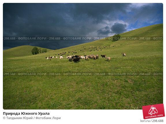 Природа Южного Урала, фото № 298688, снято 28 июля 2017 г. (c) Талдыкин Юрий / Фотобанк Лори