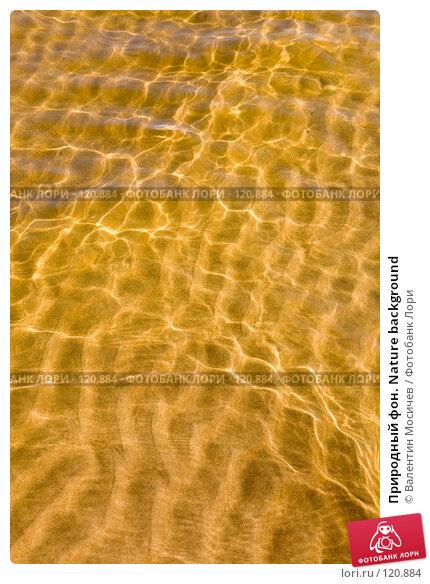 Купить «Природный фон. Nature background», фото № 120884, снято 16 августа 2007 г. (c) Валентин Мосичев / Фотобанк Лори