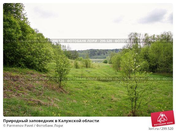 Купить «Природный заповедник в Калужской области», фото № 299520, снято 10 мая 2008 г. (c) Parmenov Pavel / Фотобанк Лори